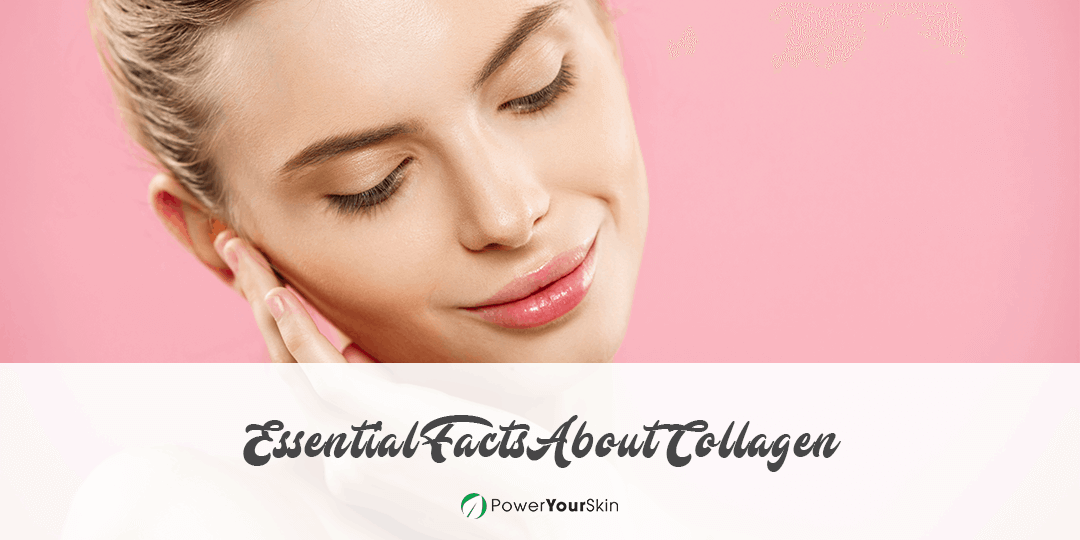 Essential Facts About Collagen